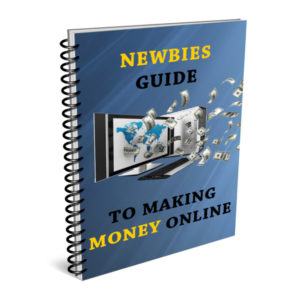 Newbies Guide To Making Money Online